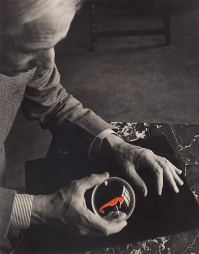 יוזף ברייטנבאך, מקס ארנסט וסוסון הים, ניו-יורק, 1942