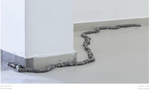 """שי-לי עוזיאל - תולעת שקלים. מתוך התערוכה """"אנחת רווחה"""" במוזיאון בית אורי ורמי נחושתן. אוצרת: נטלי לוין"""