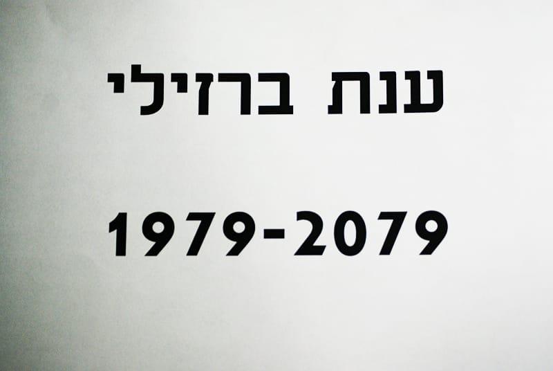"""אלינה יקירביץ', """"מוות בהזמנת הלקוח"""", מדיה-אקטיב, 2014"""