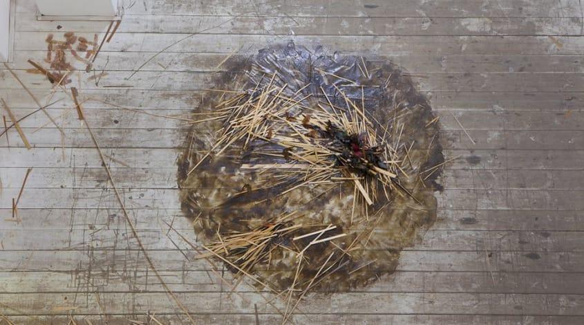 """גידי סמילנסקי ורותם ריטוב, """"אחרי הפרפרים"""", אלפרד, מכון שיתופי לאמנות ולתרבות. עד 3.10"""