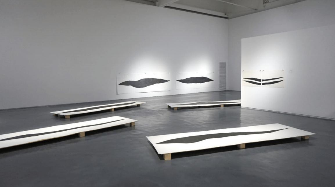 אביטל כנעני, ציפור שחורה, 2015. עץ וגרפיט על נייר. מראה הצבה